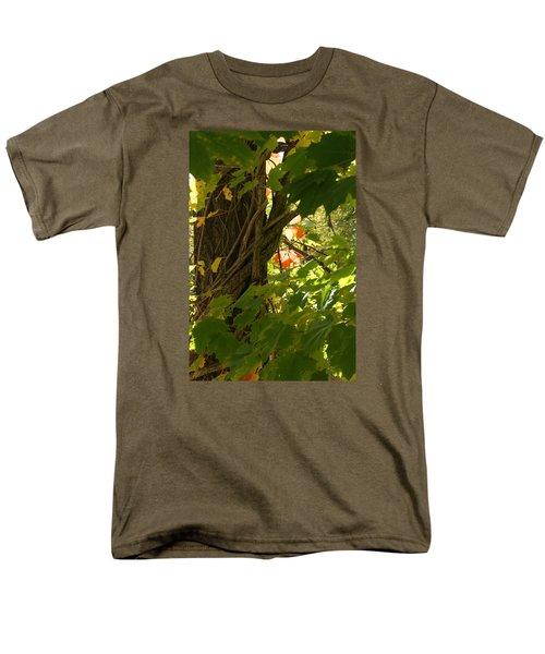 Leaf Peeping In Red Men's T-Shirt  (Regular Fit)