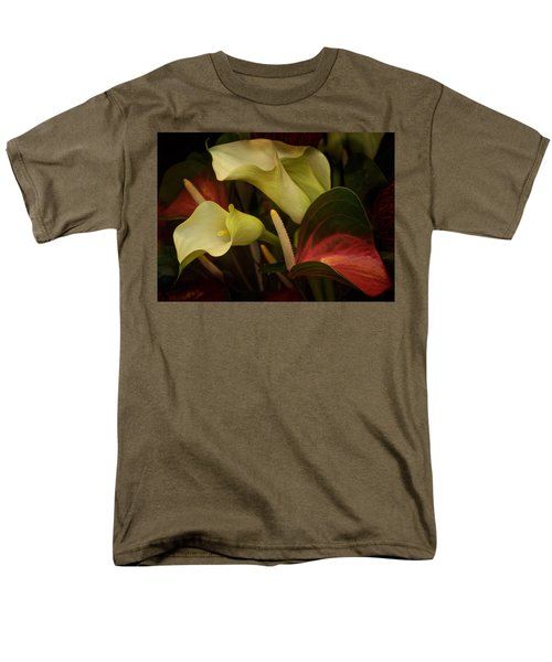 Li Ly Land Men's T-Shirt  (Regular Fit) by Richard Cummings