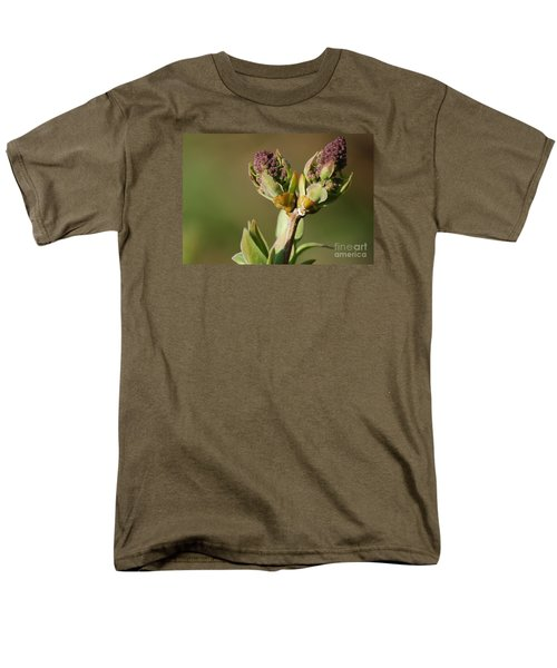 Lilac Bud Men's T-Shirt  (Regular Fit) by Randy Bodkins
