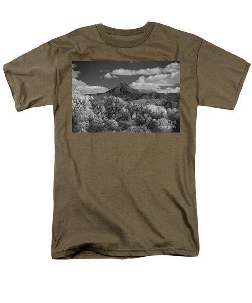 Magestic Peak Men's T-Shirt  (Regular Fit) by Vicki Pelham