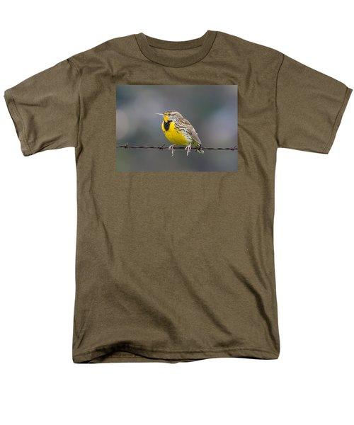 Meadowlark On Barbed Wire Men's T-Shirt  (Regular Fit)
