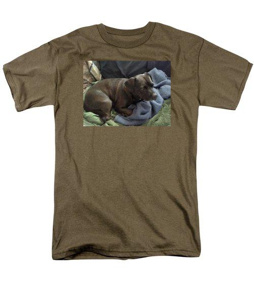 My Puppy Bella Men's T-Shirt  (Regular Fit) by Jewel Hengen