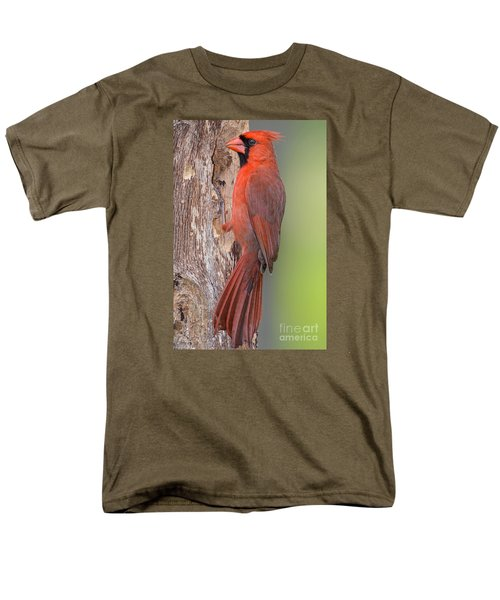 Northern Cardinal Male Men's T-Shirt  (Regular Fit) by Bonnie Barry