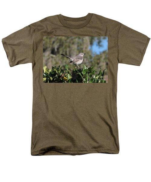 Northern Mockingbird Men's T-Shirt  (Regular Fit) by Carol Groenen