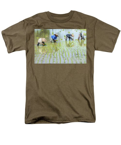 Paddy Field 1 Men's T-Shirt  (Regular Fit) by Werner Padarin