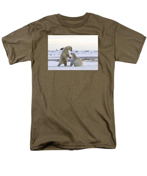 Polar Bear Play-fighting Men's T-Shirt  (Regular Fit)