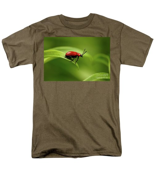 Red Scarlet Lily Beetle On Plant Men's T-Shirt  (Regular Fit) by Sergey Taran