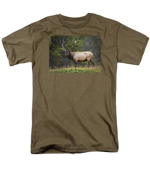 Rocky Mountain National Park Bull Elk Men's T-Shirt  (Regular Fit) by John Vose
