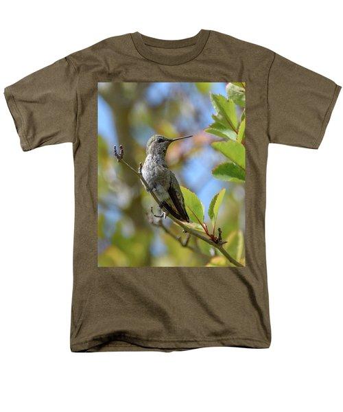 Rufous Hummingbird Men's T-Shirt  (Regular Fit) by Keith Boone