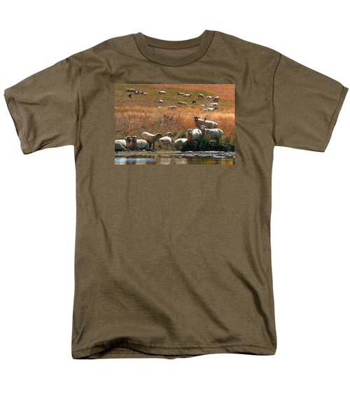 Men's T-Shirt  (Regular Fit) featuring the photograph Sheep Country by Deborah Moen