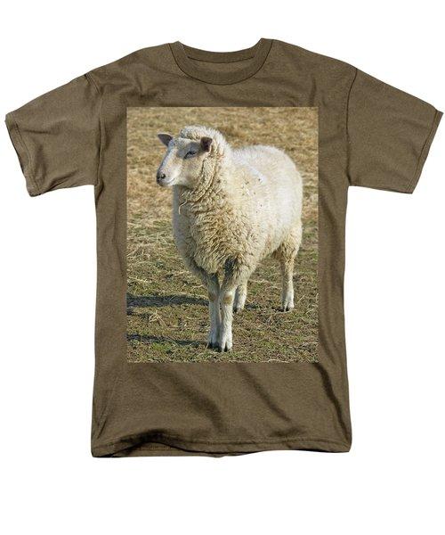 Sheep Men's T-Shirt  (Regular Fit) by James Larkin
