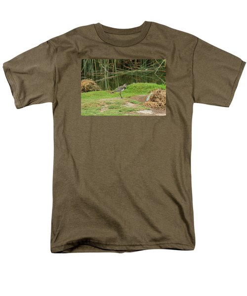 Southern Lapwing On Shore Men's T-Shirt  (Regular Fit) by Robert Hamm