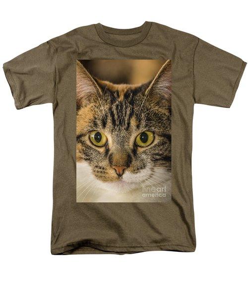 Symmetrical Cat Men's T-Shirt  (Regular Fit)