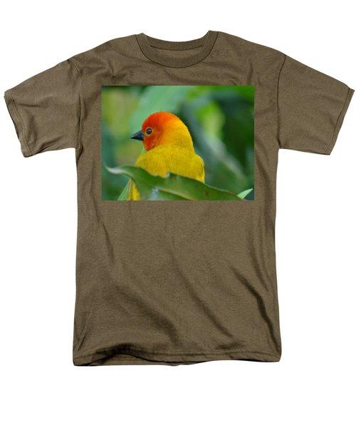 Through A Child's Eyes - Close Up Yellow And Orange Bird 2 Men's T-Shirt  (Regular Fit) by Exploramum Exploramum