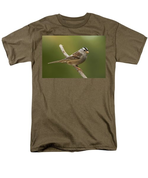 White-crowned Sparrow Men's T-Shirt  (Regular Fit) by Doug Herr