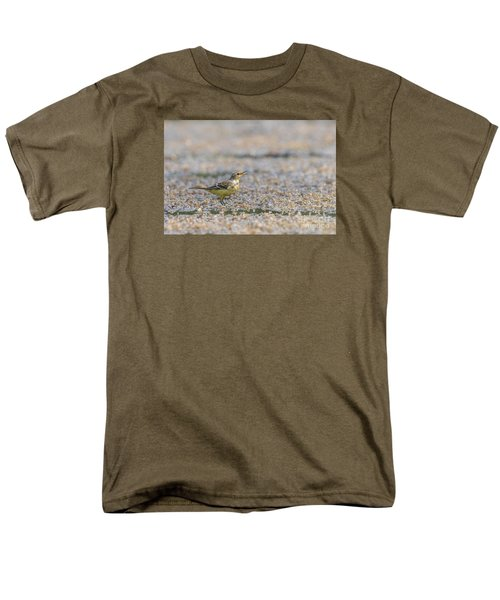 Men's T-Shirt  (Regular Fit) featuring the photograph Yellow Crowned Wagtail Juvenile by Jivko Nakev