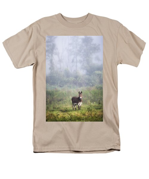 August Morning - Donkey In The Field. Men's T-Shirt  (Regular Fit)