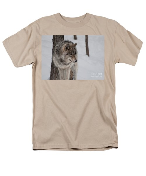 Men's T-Shirt  (Regular Fit) featuring the photograph Big Bad Wolf by Bianca Nadeau