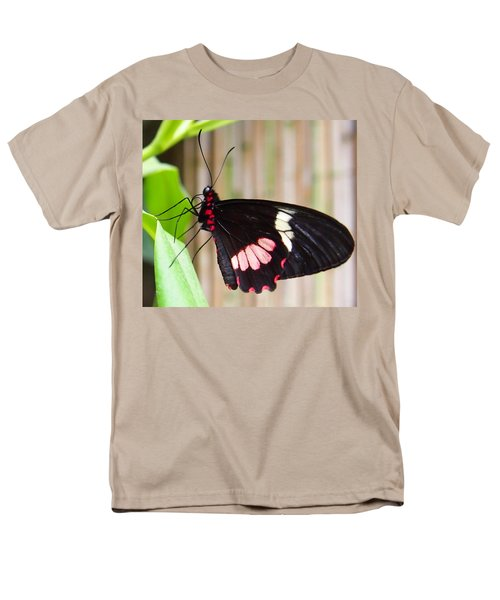 Men's T-Shirt  (Regular Fit) featuring the photograph Black And Red Cattleheart Butterfly by Amy McDaniel