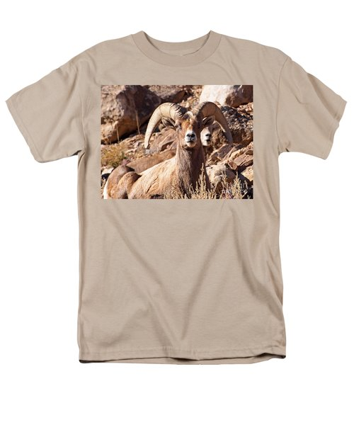 Desert Bighorn Sheep Men's T-Shirt  (Regular Fit) by Nadja Rider