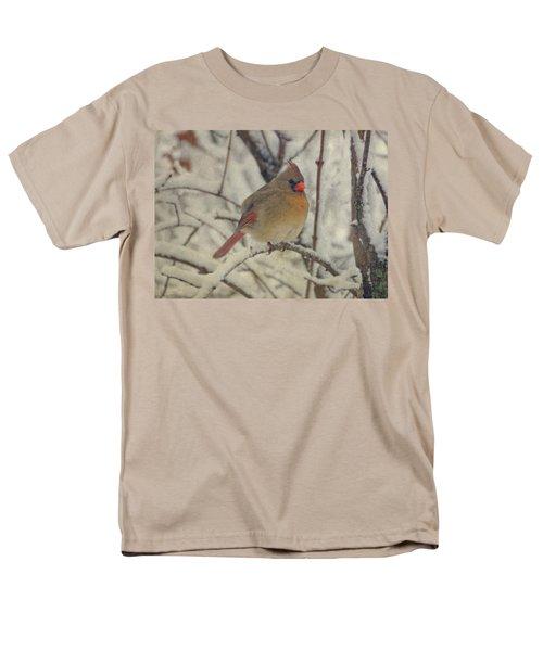 Female Cardinal In The Snow II Men's T-Shirt  (Regular Fit) by Sandy Keeton