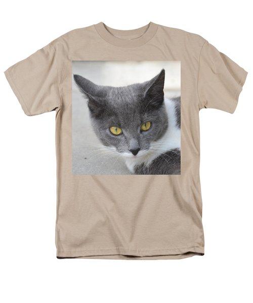 Gray Cat - Listening Men's T-Shirt  (Regular Fit) by Tine Nordbred