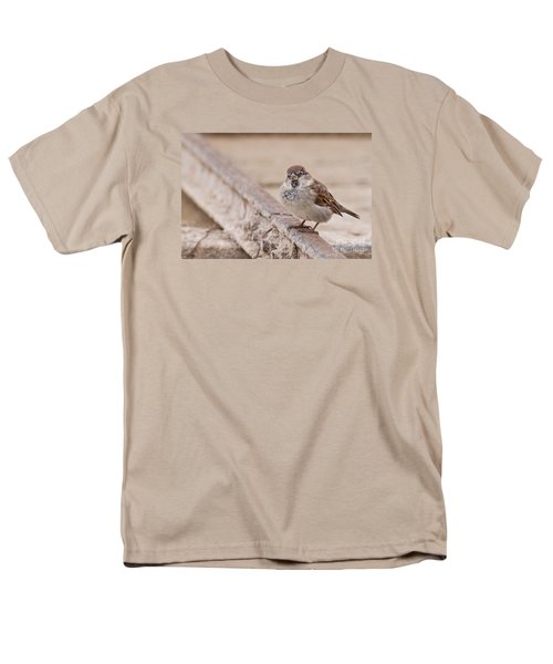 House Sparrow Men's T-Shirt  (Regular Fit) by Simona Ghidini