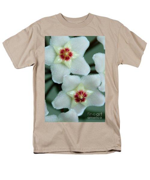 Hoya Men's T-Shirt  (Regular Fit) by Debbie Hart