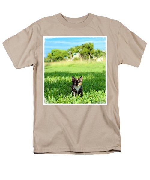Kitten Men's T-Shirt  (Regular Fit) by Carsten Reisinger