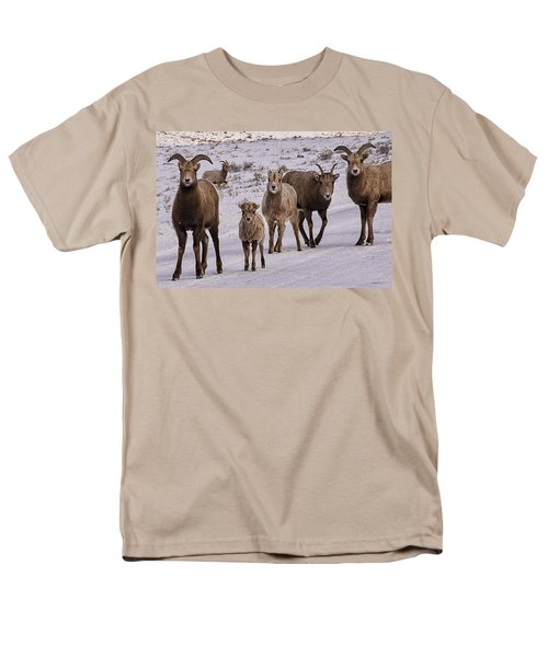 Men's T-Shirt  (Regular Fit) featuring the photograph Not Too Sheepish by Priscilla Burgers