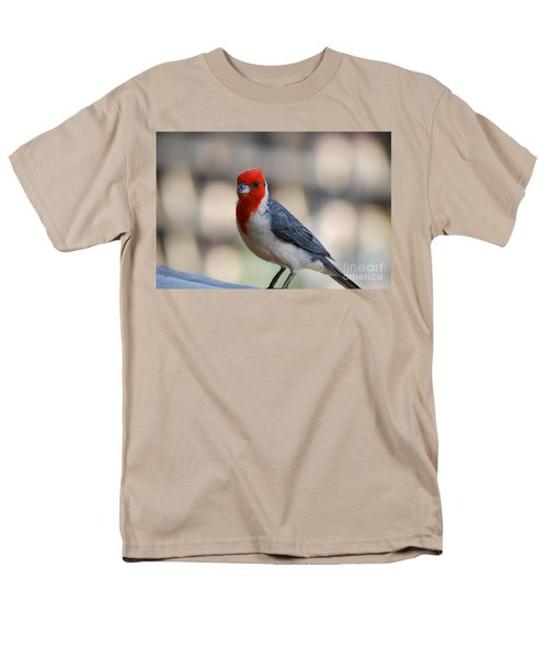 Red Crested Cardinal Men's T-Shirt  (Regular Fit) by DejaVu Designs