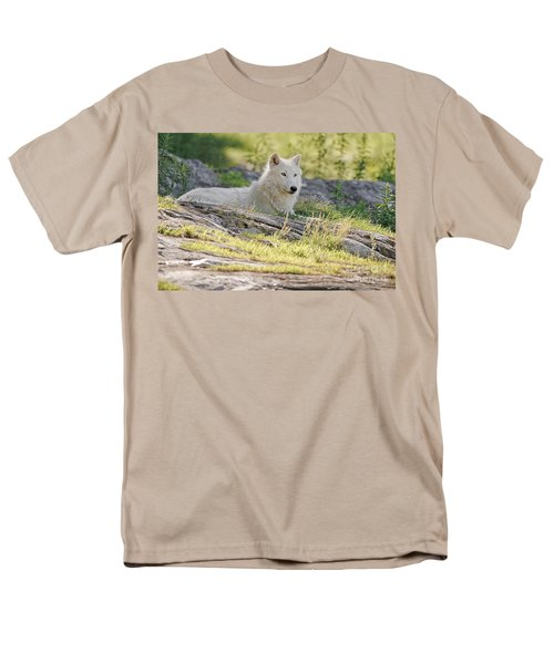 Men's T-Shirt  (Regular Fit) featuring the photograph Resting Arctic Wolf by Wolves Only