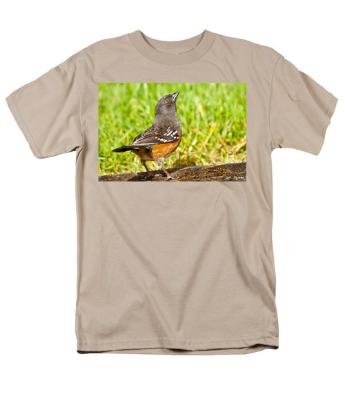 Spotted Towhee Looking Up Men's T-Shirt  (Regular Fit) by Jeff Goulden