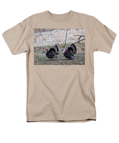 Strutting Turkeys Men's T-Shirt  (Regular Fit)