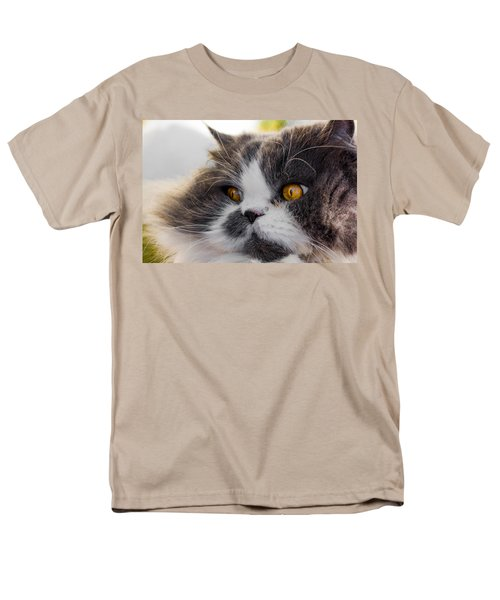 The Watching Cat Men's T-Shirt  (Regular Fit) by Daniel Precht