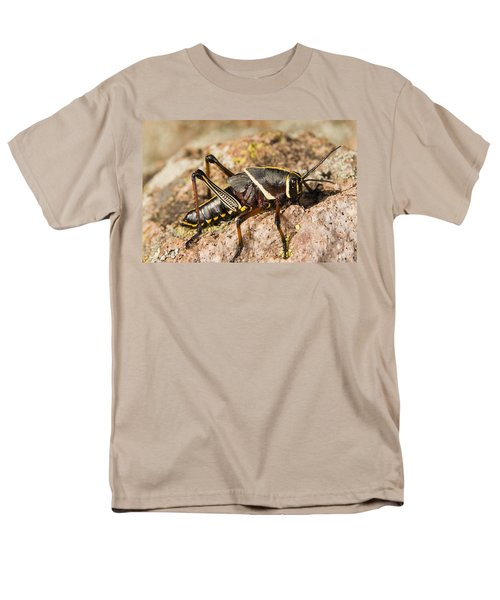 A Colorful Lubber Grasshopper Men's T-Shirt  (Regular Fit) by Jack Goldfarb