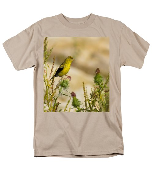 Goldfinch On Lookout Men's T-Shirt  (Regular Fit)