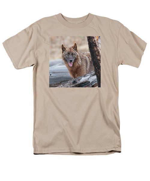 The Lone Wolf Men's T-Shirt  (Regular Fit) by CR  Courson