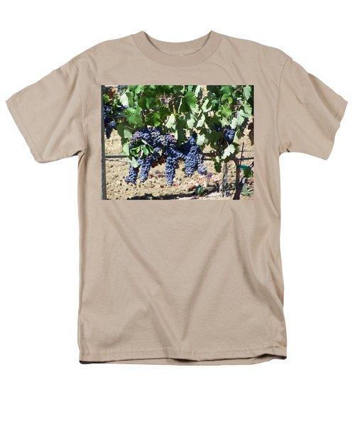 Grapevine Men's T-Shirt  (Regular Fit)