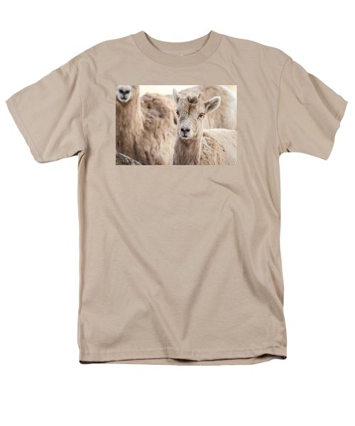 Men's T-Shirt  (Regular Fit) featuring the photograph A Little Lamb Cuteness by Yeates Photography