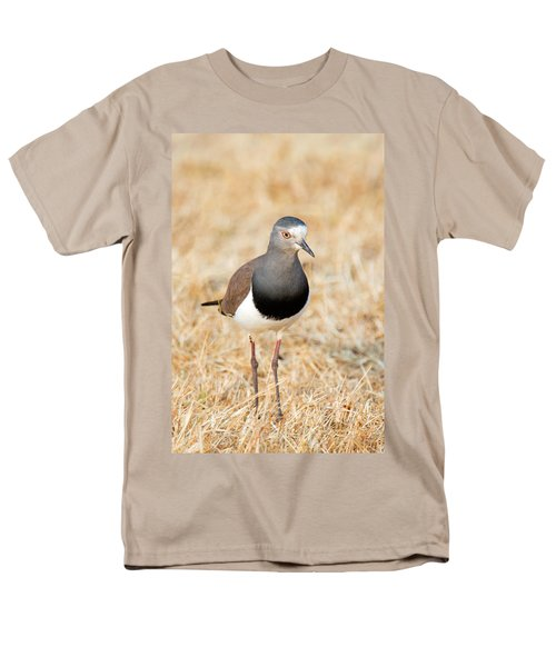 African Wattled Lapwing Vanellus Men's T-Shirt  (Regular Fit) by Panoramic Images
