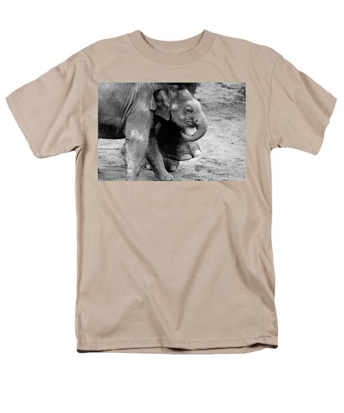 Baby Elephant Security Men's T-Shirt  (Regular Fit) by Wes and Dotty Weber