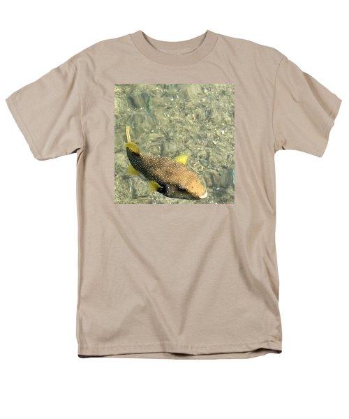 Box Fish - 3 Men's T-Shirt  (Regular Fit) by Karen Nicholson