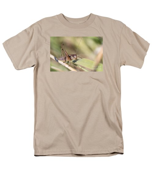 Men's T-Shirt  (Regular Fit) featuring the photograph Bush Cricket by Jivko Nakev