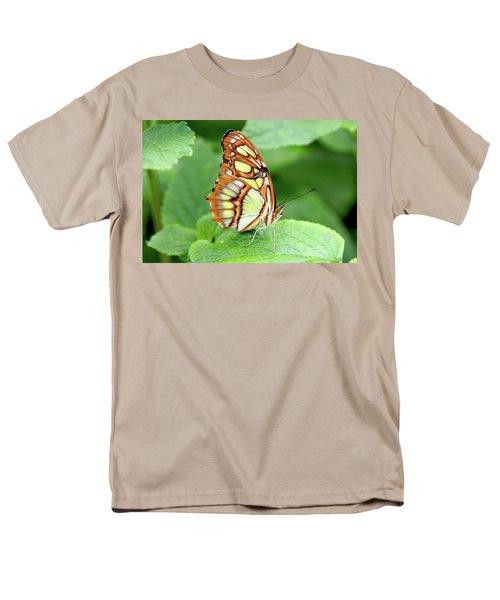 Butterfly On Leaf Men's T-Shirt  (Regular Fit) by Meta Gatschenberger