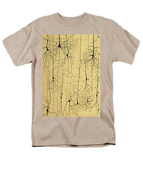 Cajal Drawing Of Microscopic Structure Of The Brain 1904 Men's T-Shirt  (Regular Fit) by Science Source