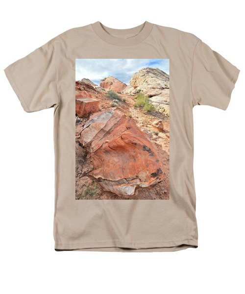 Canyon Of Color In Valley Of Fire Men's T-Shirt  (Regular Fit) by Ray Mathis