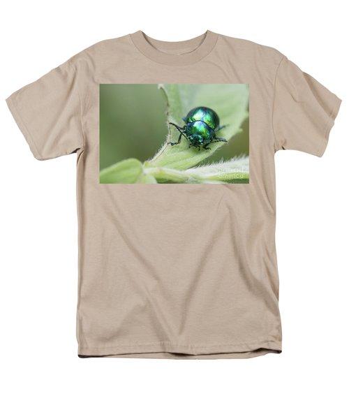 Dead-nettle Leaf Beetle - Chrysolina Fastuosa Men's T-Shirt  (Regular Fit) by Jivko Nakev