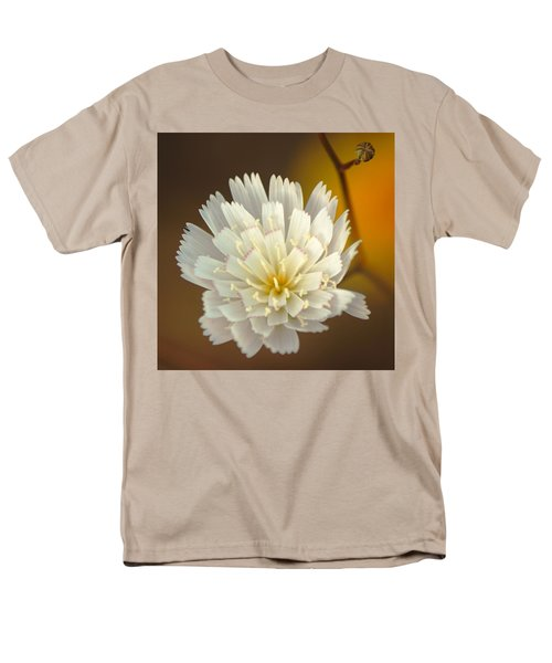 Death Valley Superbloom 203 Men's T-Shirt  (Regular Fit) by Daniel Woodrum