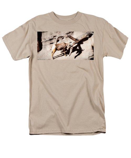 Desert Bighorn Ram Men's T-Shirt  (Regular Fit)